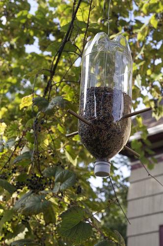 Hranilica od plastične boce (foto: Flickr)