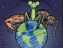 Člankonošci (evolution.berkeley.edu/evolibrary/article/_0/arthropods_intro_05)