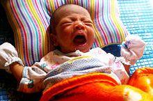 Novorođenče (Foto: FreeDigitalPhotos.net)