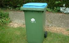 Kanta za smeće (foto: Wikimedia Commons)