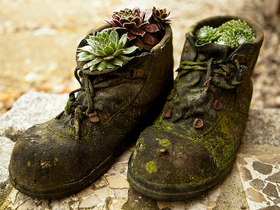 Stare cipele su postale novi dom za biljke (foto: Flickr)
