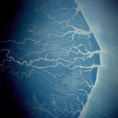 Delta rijeke Niger (foto: Wikimedia Commons)